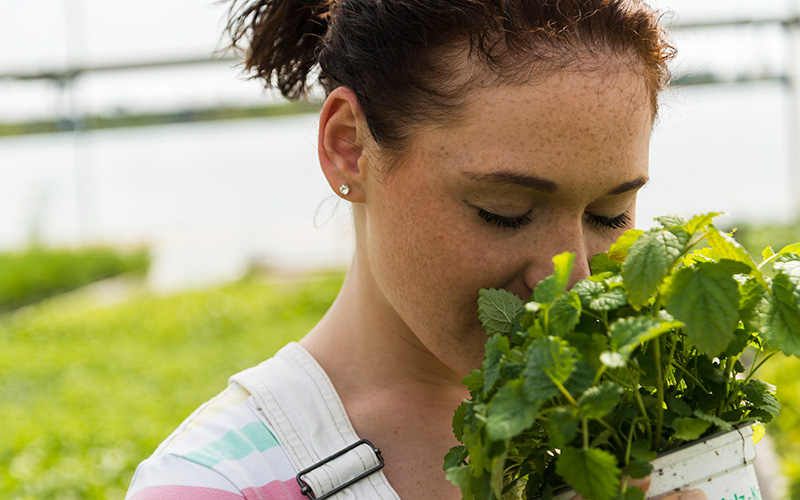 A white woman with dark hair in a ponytail buries her nose into a pot of lemon balm