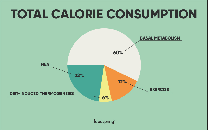A pie chart displays the percentage of total calorie consumption used by basal metabolism (60%), exercise (12%), diet-induced thermogenesis (6%), and NEAT (22%).