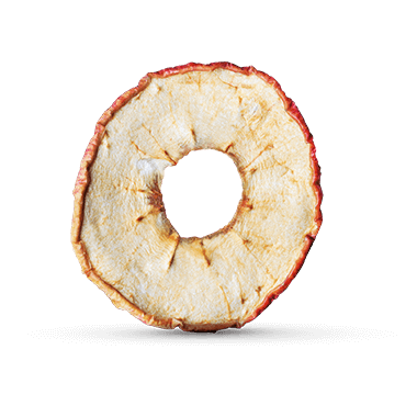 Close-up of a single food-springing apple ring