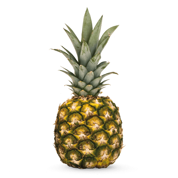 Front view pineapple