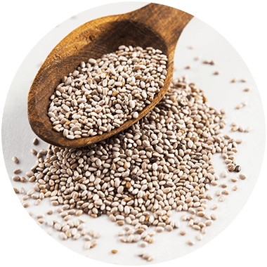 Close-up of white chia seeds on a wooden spoon
